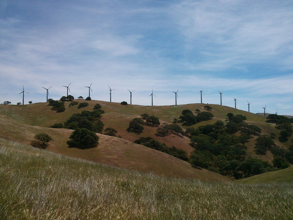 Pacheco State Park Windmills