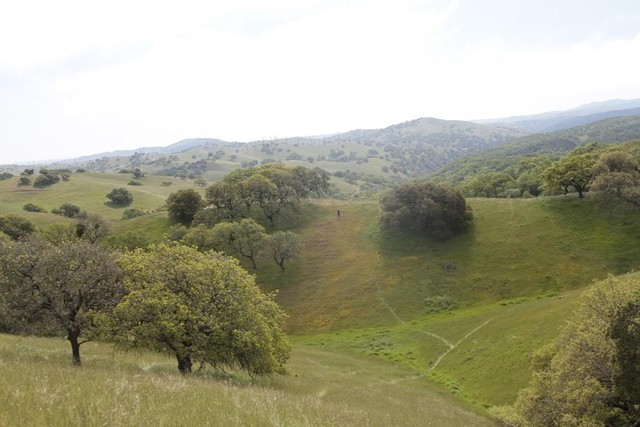 Pacheco State Park panorama