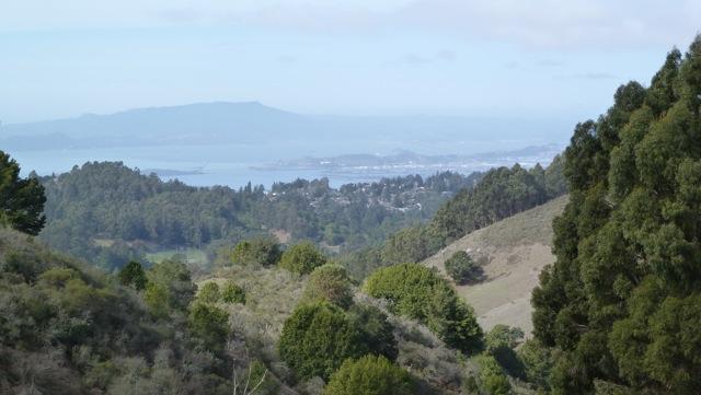 View from Tilden Park