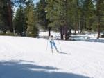 ski01 mkohler