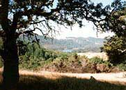 A scenic view at Annadel State Park