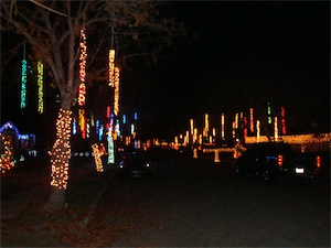 Willow Glen Holiday Lights